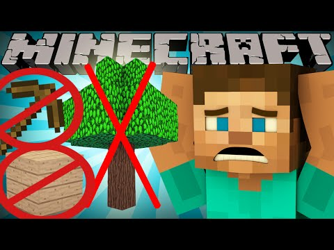 If Wood was Rare - Minecraft