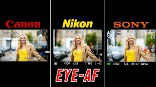 OFFICIAL Nikon Z6 EYE AF Real World Review (VS Sony & Canon) | NOT What I Expected!