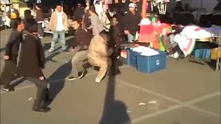 Hmong Fresno Gang Fight 2017-2018