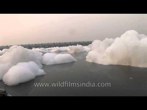 Pollution blights the Yamuna River in Delhi