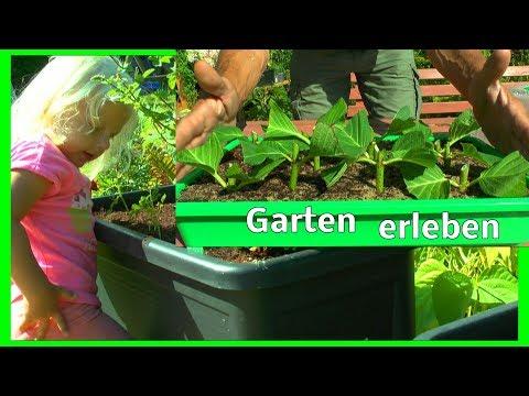 Garten erleben Heu fast fertig Garten sehen und inspirieren lassen mit Melody