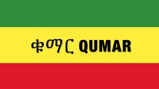 Nhatty Man -  Qumar ቁማር