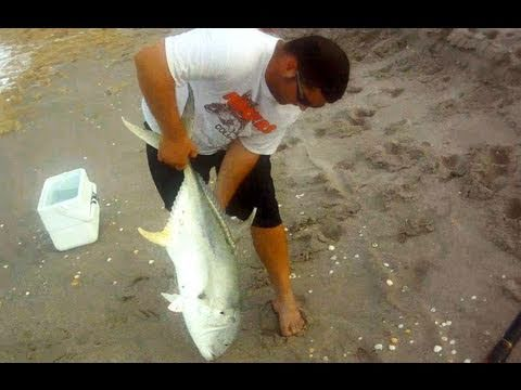 Saltwater Fishing - Giant Jack Crevalle