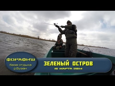 рыбалка в зеленом городе