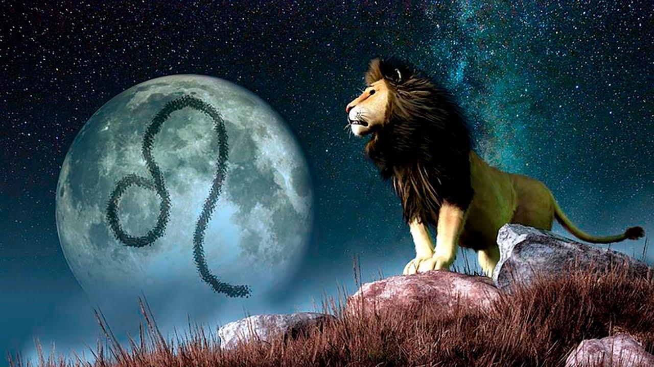 под знаком льва рождаются великие люди важно регулярно менять
