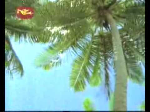 Robinson Andaraya Song ( Very Calming, Must See!) video