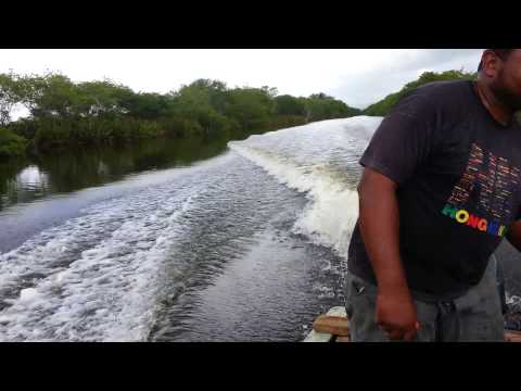 Salt Creek River, Hanover Jamaica