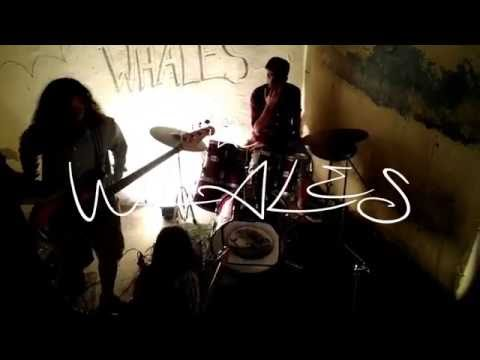 Chamber Of Reflection - Whales