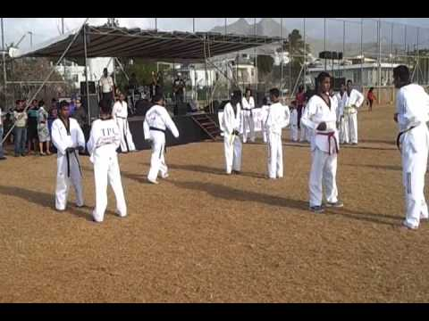 Demonstration of Citadel Taekwondo Academy Image 1