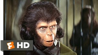 Video clip Planet of the Apes (2/5) Movie CLIP - Human See, Human Do (1968) HD