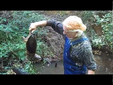 Georgia Fishing - Noodling for snapping turtles!