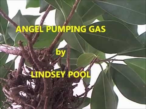 Lindsey Pool - Angel Pumping Gas