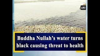 Buddha Nullah's water turns black causing threat to health - Punjab News