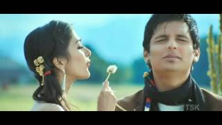 Pooja hegde hot song