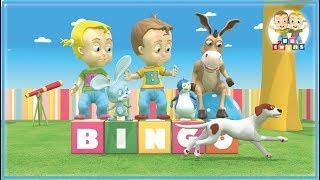 BINGO   Nursery Rhymes for Kids Songs
