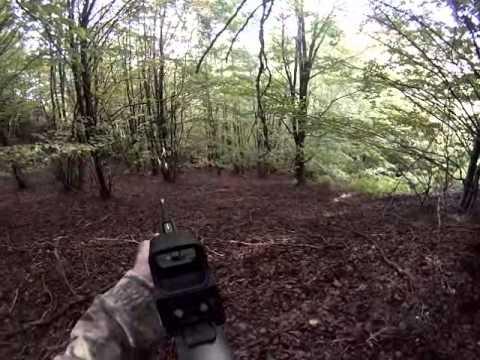 video caccia al cinghiale - abbattimento da terra (per caduta) con testata finale