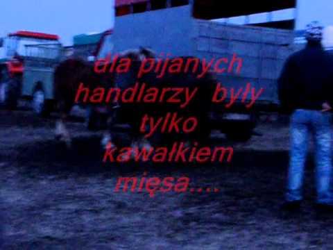 Skaryszew 2011 Wstępy