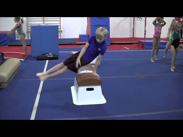 The Colt Pommel Horse Trainer