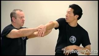 Preview - Samuel Kwok - Wing Chun Vol 3 - BIU GEE