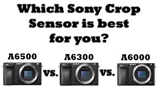 Sony A6500 vs. A6300 vs. A6000- Which Sony Crop Sensor Body is BEST for You?