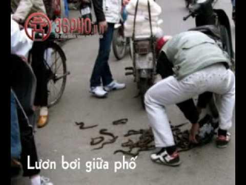 Chỉ có ở Hà Nội (clip vui)