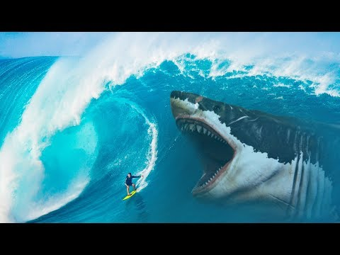 Что Если бы Акула Мегалодон не Вымерла?