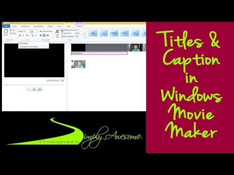This video tutorial demonstrates the differences between titles ...