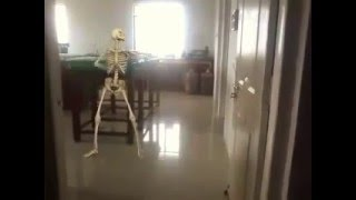 What happens when skeletons dance
