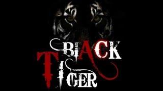 Shishe Ki Umar Pyaar KI DJ Remix by Black Tiger