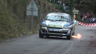 Renault Clio Williams Gr.A | Pure Sound | Rally du Var 2014 | Collobriere