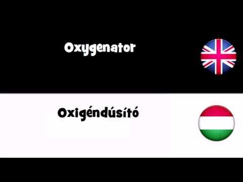Header of oxygenator