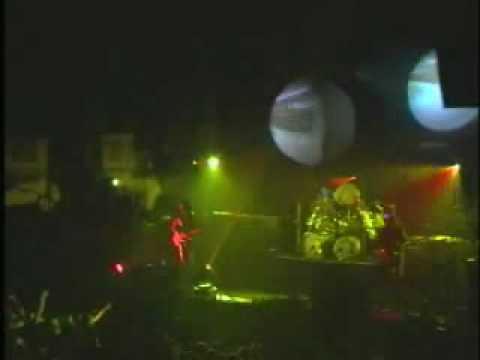 Primus - Jerry Was A Race Car Driver (Live)