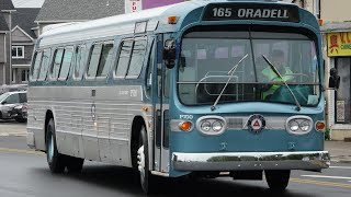 Mostly Old Retired New Look Fishbowl Buses In New Jersey