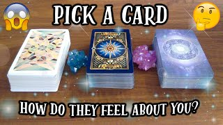 PICK A CARD! *HOW DO THEY FEEL ABOUT YOU?* 😱🤔 TIMELESS TAROT LOVE READING