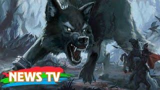 Video clip Những sinh vật đáng sợ trong truyền thuyết