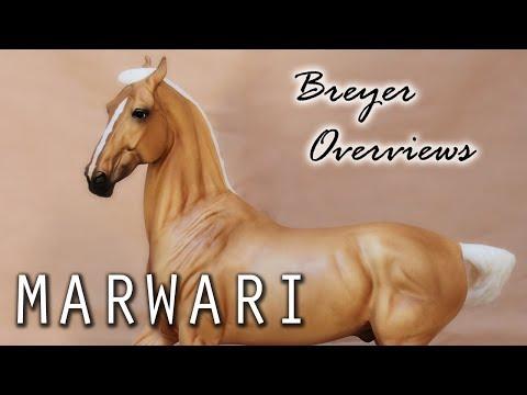 Breyer Overviews Episode 3: Marwari video