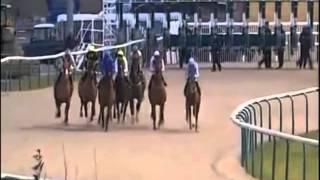 Russian Horse Racing Service