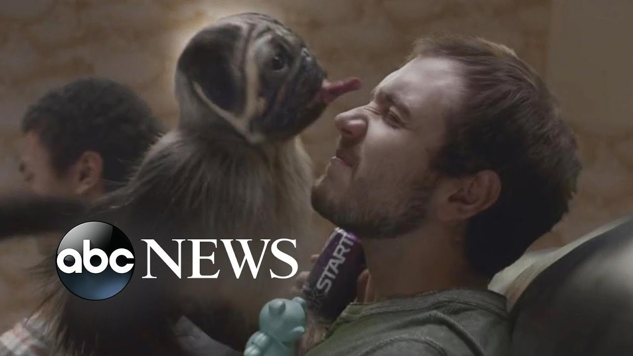 Super Bowl Ads Promise to Bring Back Happy