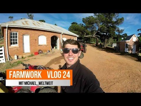 Farmwork Australien | Ein ganz normaler Tag Vlog 24 | Michael Weltweit