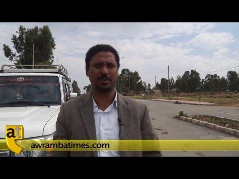 "Zalambesa: An Ethiopian town victim of ""No Peace No war"" Policy"