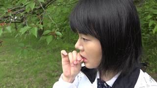 木の実の味調査