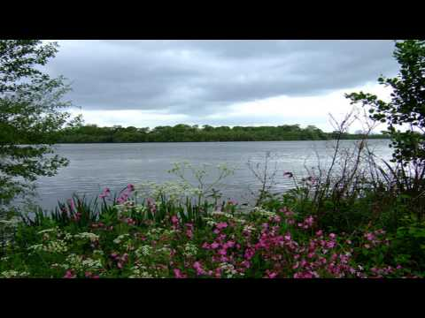 Aldenham Country Park Rickmansworth Hertfordshire