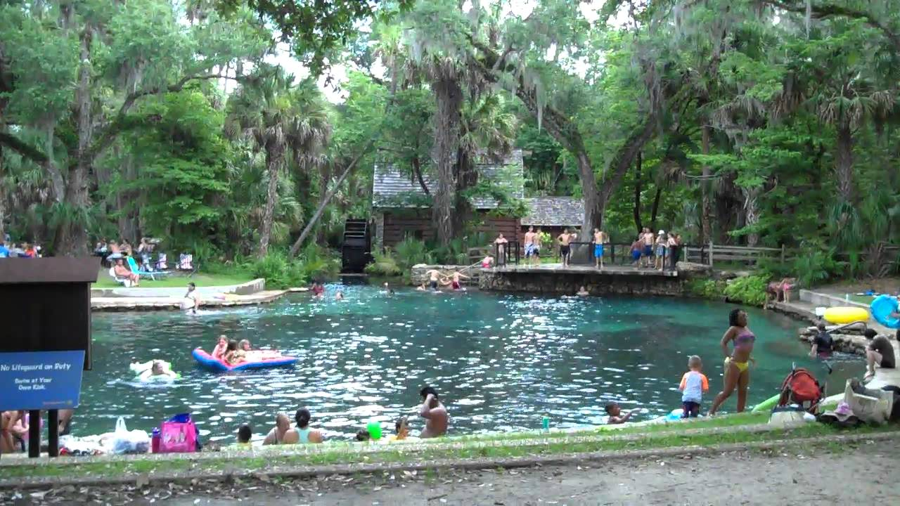 Juniper Springs Swimming Area Youtube