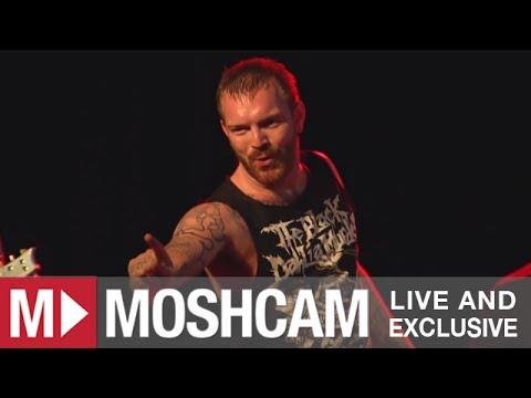 Alesana - Hymn For The Shameless (Live @ Sydney, 2013)