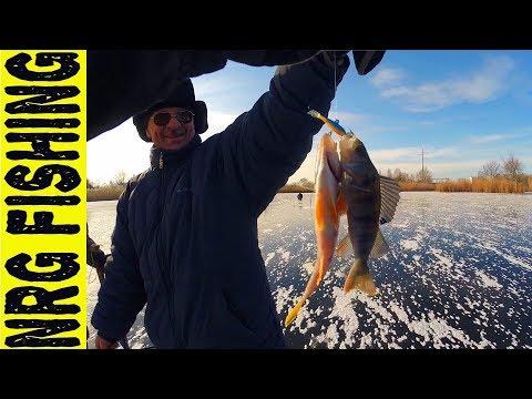 Открылись по окуню в 2018 | Зимняя рыбалка