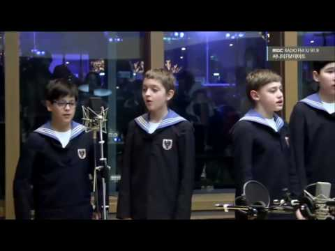 Vienna Boys Choir (Haydnchor) - Verleih uns Frieden, studio recording