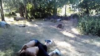 ogden backyard fight