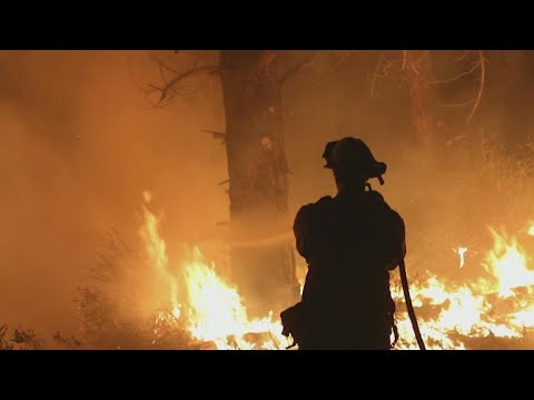 Mendocino Complex wildfire on track to becoming largest fire in California history