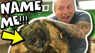 HELP ME NAME MY NEW ALLIGATOR SNAPPING TURTLE!!! | BRIAN BARCZYK