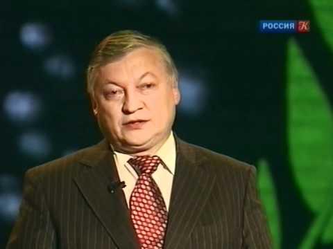 Анатолий Карпов. Линия жизни (2011)